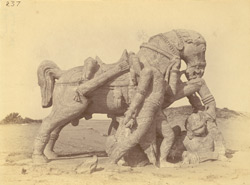 Statue of one of the two horses near the ashvadavara, Surya Temple or Black Pagoda, Konarka 1003356